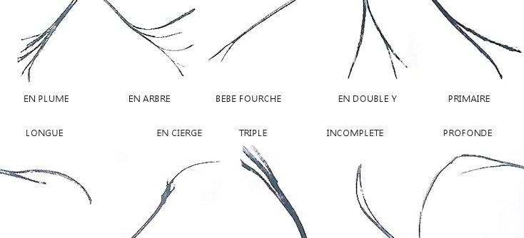 Les masques pour les cheveux de la chute avec le placenta